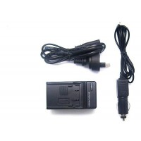 Car and Wall Charger for Panasonic DMW-BLJ31 Battery